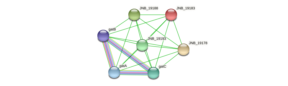 JNB_19183 protein (Janibacter sp. HTCC2649) - STRING interaction network
