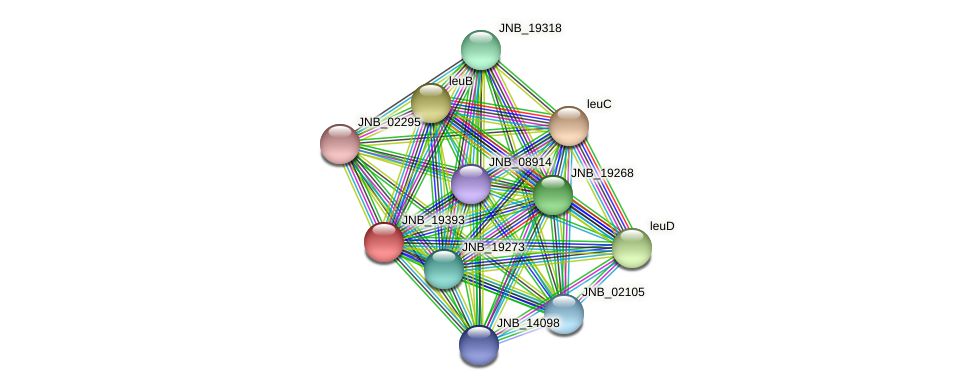 JNB_19393 protein (Janibacter sp. HTCC2649) - STRING interaction network
