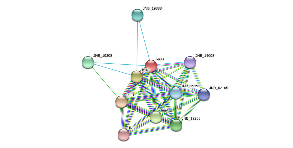 leuD protein (Janibacter sp. HTCC2649) - STRING interaction network