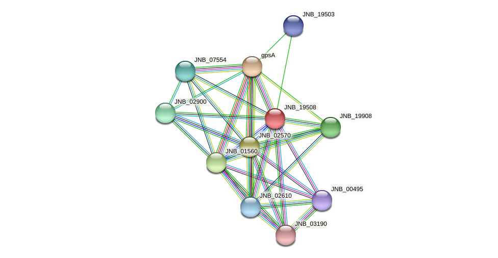 JNB_19508 protein (Janibacter sp. HTCC2649) - STRING interaction network