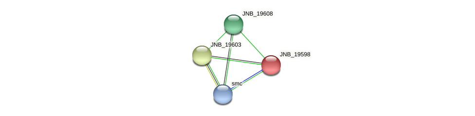 JNB_19598 protein (Janibacter sp. HTCC2649) - STRING interaction network
