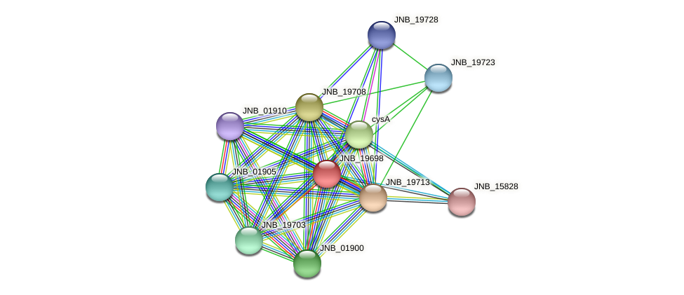 JNB_19698 protein (Janibacter sp. HTCC2649) - STRING interaction network