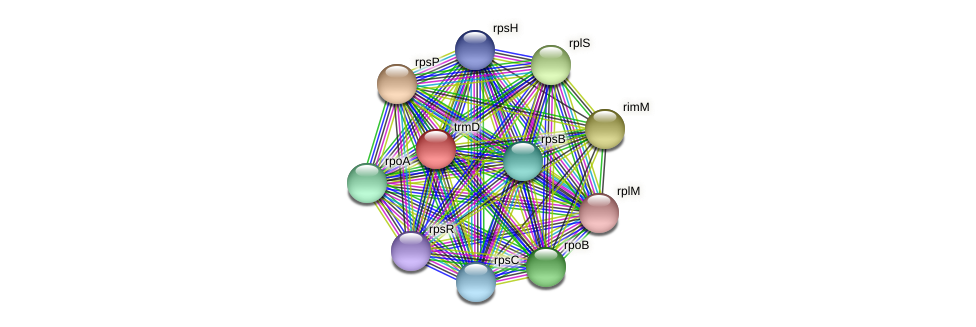 trmD protein (Janibacter sp. HTCC2649) - STRING interaction network