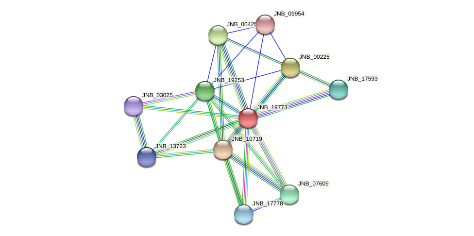 JNB_19773 protein (Janibacter sp. HTCC2649) - STRING interaction network