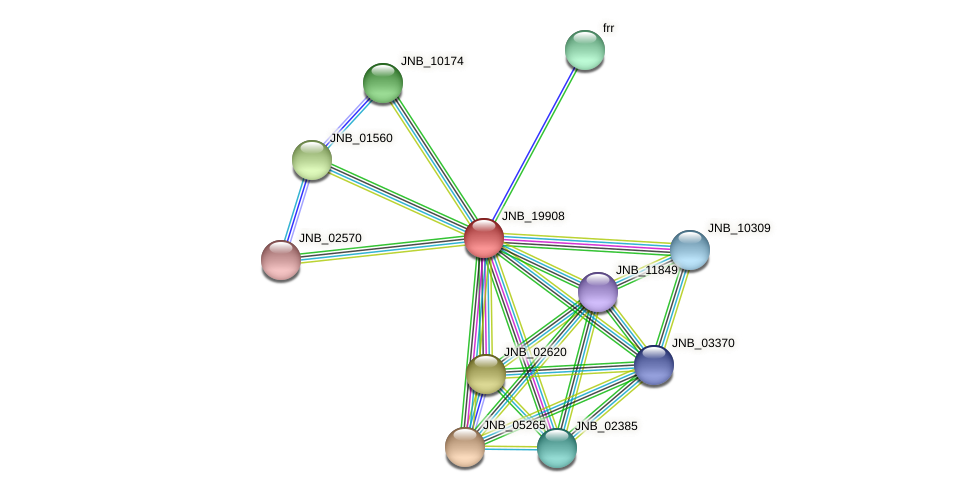 JNB_19908 protein (Janibacter sp. HTCC2649) - STRING interaction network