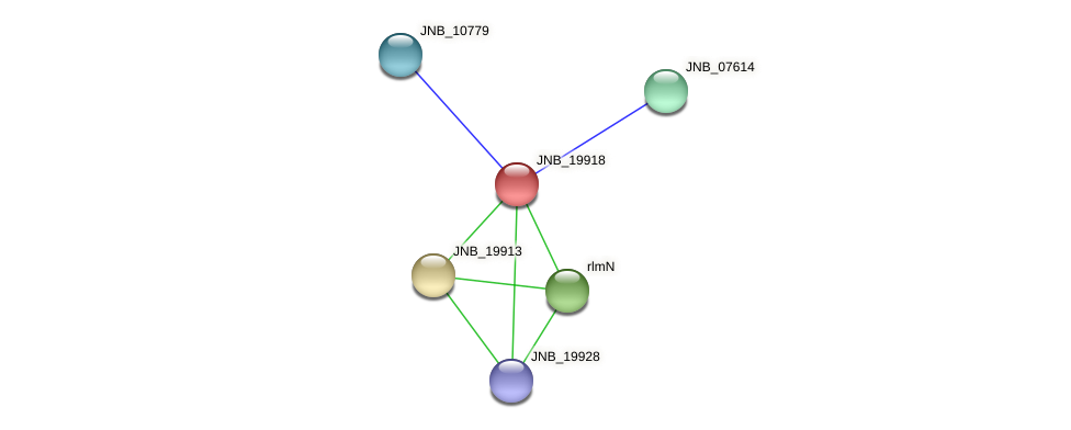 JNB_19918 protein (Janibacter sp. HTCC2649) - STRING interaction network
