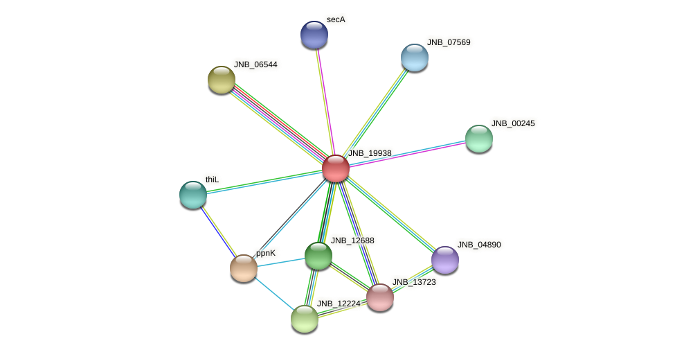 JNB_19938 protein (Janibacter sp. HTCC2649) - STRING interaction network