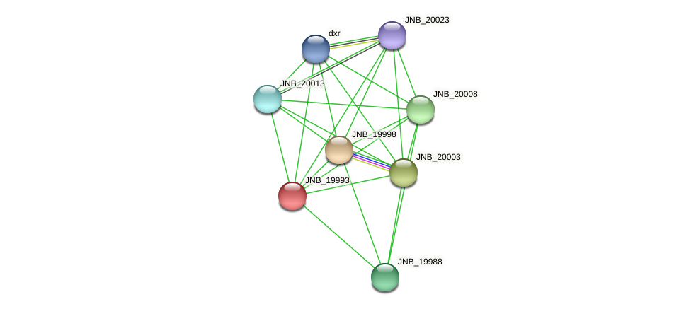 JNB_19993 protein (Janibacter sp. HTCC2649) - STRING interaction network