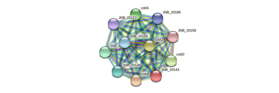 JNB_20143 protein (Janibacter sp. HTCC2649) - STRING interaction network