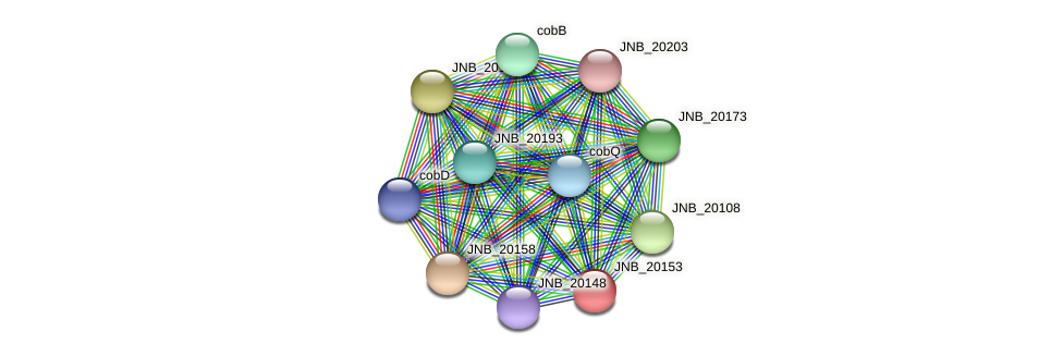 JNB_20153 protein (Janibacter sp. HTCC2649) - STRING interaction network