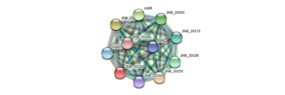 JNB_20158 protein (Janibacter sp. HTCC2649) - STRING interaction network