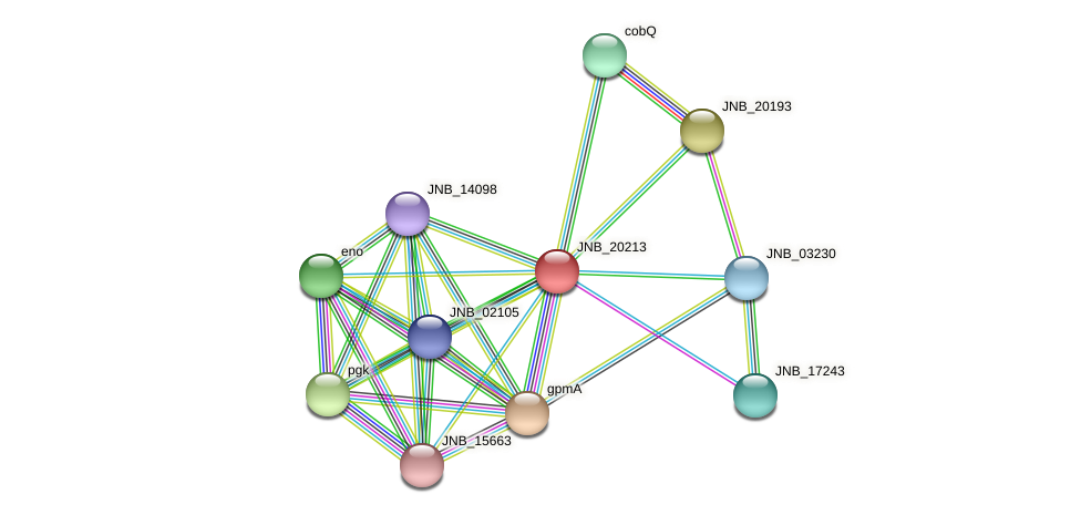 JNB_20213 protein (Janibacter sp. HTCC2649) - STRING interaction network