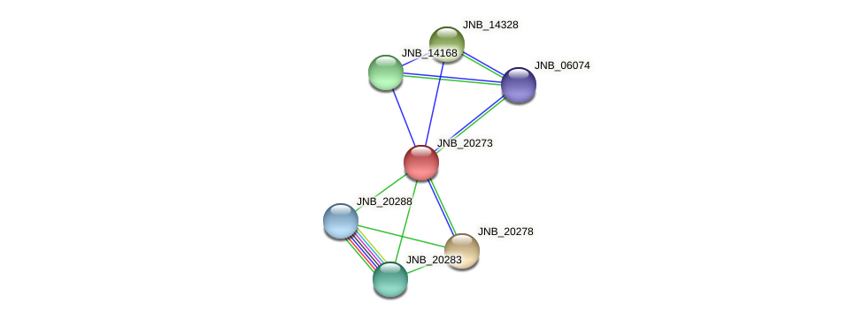 JNB_20273 protein (Janibacter sp. HTCC2649) - STRING interaction network