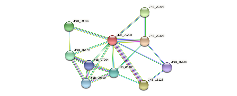 JNB_20298 protein (Janibacter sp. HTCC2649) - STRING interaction network