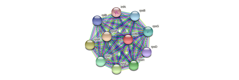 infB protein (Janibacter sp. HTCC2649) - STRING interaction network