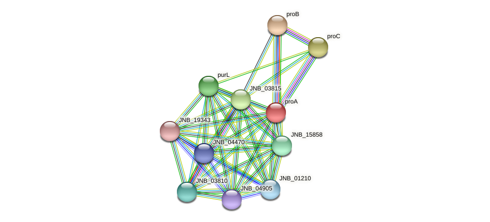 proA protein (Janibacter sp. HTCC2649) - STRING interaction network