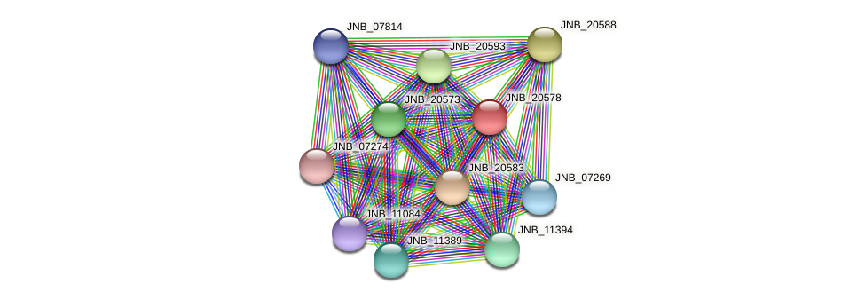 JNB_20578 protein (Janibacter sp. HTCC2649) - STRING interaction network