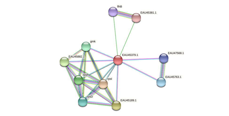 R2601_00265 protein (Pelagibaca bermudensis) - STRING interaction network