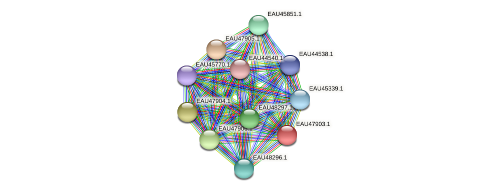 R2601_00650 protein (Pelagibaca bermudensis) - STRING interaction network