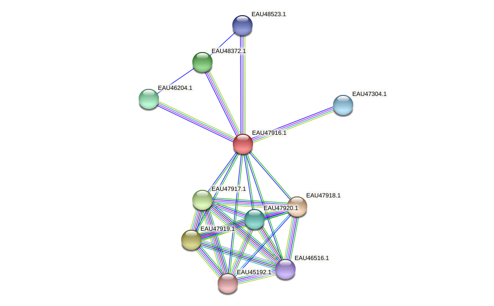 R2601_00715 protein (Pelagibaca bermudensis) - STRING interaction network