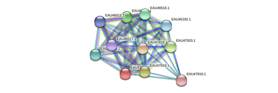 R2601_00720 protein (Pelagibaca bermudensis) - STRING interaction network
