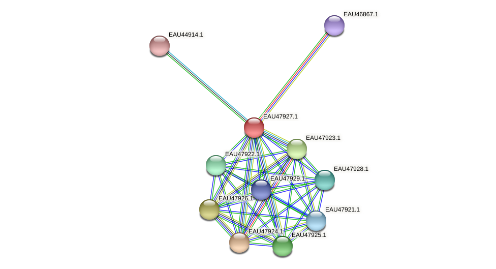 R2601_00770 protein (Pelagibaca bermudensis) - STRING interaction network