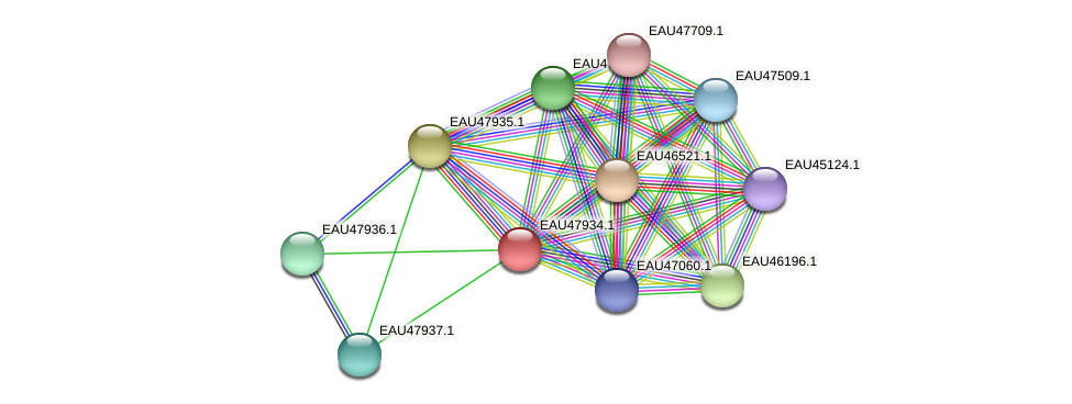 R2601_00805 protein (Pelagibaca bermudensis) - STRING interaction network