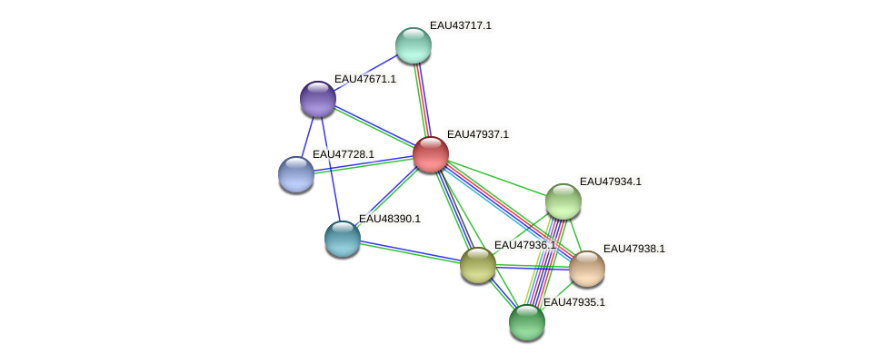 R2601_00820 protein (Pelagibaca bermudensis) - STRING interaction network