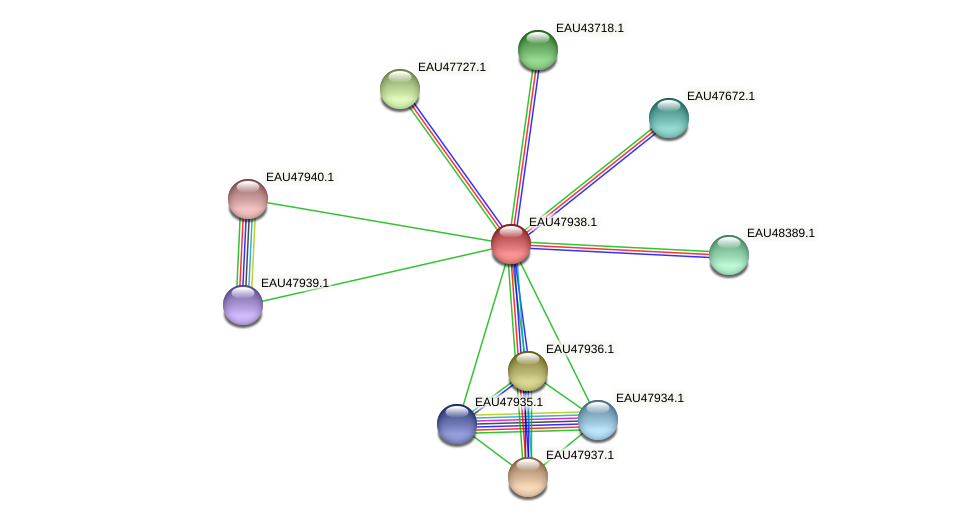 R2601_00825 protein (Pelagibaca bermudensis) - STRING interaction network