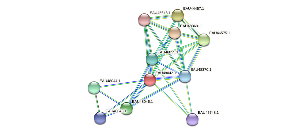 R2601_01345 protein (Pelagibaca bermudensis) - STRING interaction network