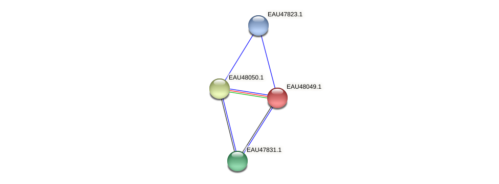 R2601_01380 protein (Pelagibaca bermudensis) - STRING interaction network