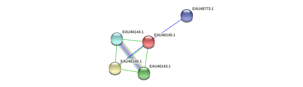 R2601_01568 protein (Pelagibaca bermudensis) - STRING interaction network