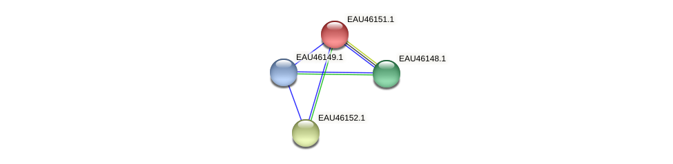 R2601_01598 protein (Pelagibaca bermudensis) - STRING interaction network