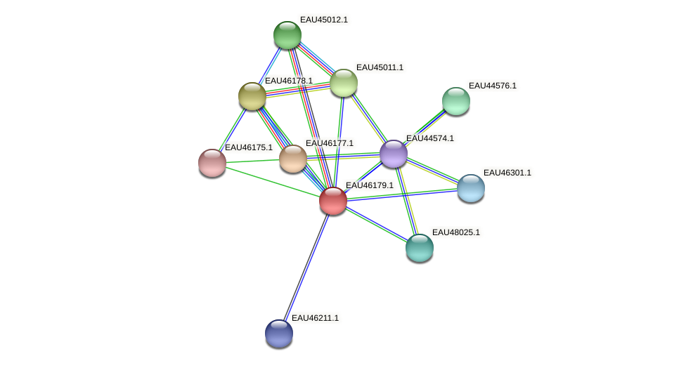 R2601_01738 protein (Pelagibaca bermudensis) - STRING interaction network