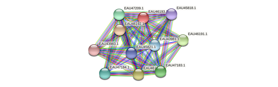 R2601_01808 protein (Pelagibaca bermudensis) - STRING interaction network