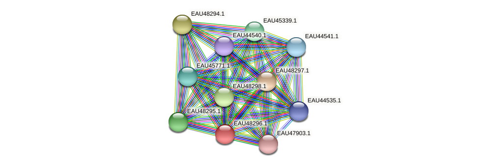 R2601_01948 protein (Pelagibaca bermudensis) - STRING interaction network