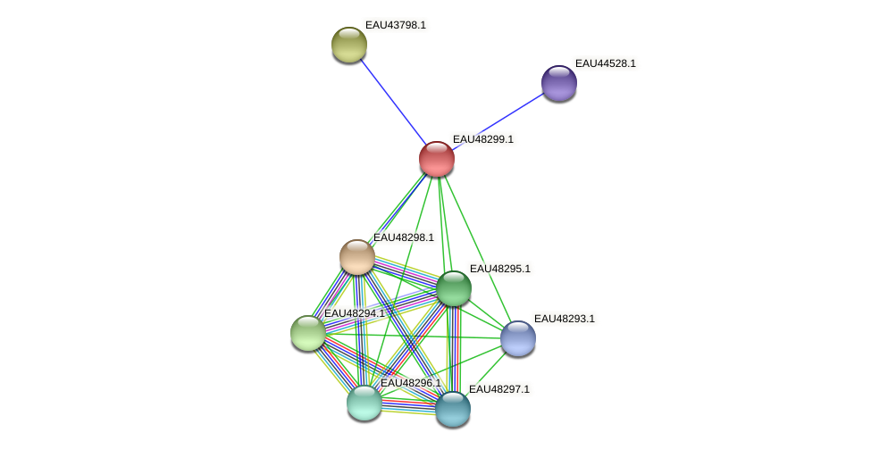 R2601_01963 protein (Pelagibaca bermudensis) - STRING interaction network