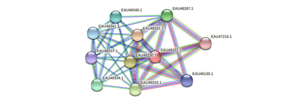 R2601_02128 protein (Pelagibaca bermudensis) - STRING interaction network
