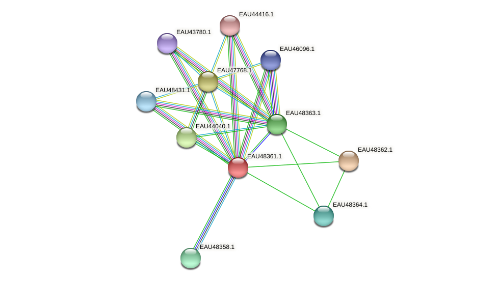 R2601_02273 protein (Pelagibaca bermudensis) - STRING interaction network