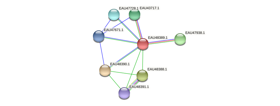 R2601_02413 protein (Pelagibaca bermudensis) - STRING interaction network