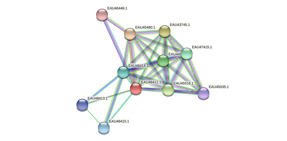 R2601_02528 protein (Pelagibaca bermudensis) - STRING interaction network