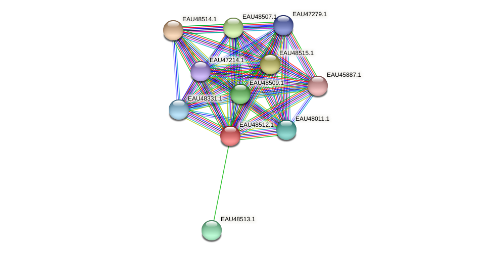 R2601_03028 protein (Pelagibaca bermudensis) - STRING interaction network