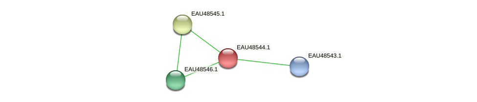 R2601_03188 protein (Pelagibaca bermudensis) - STRING interaction network