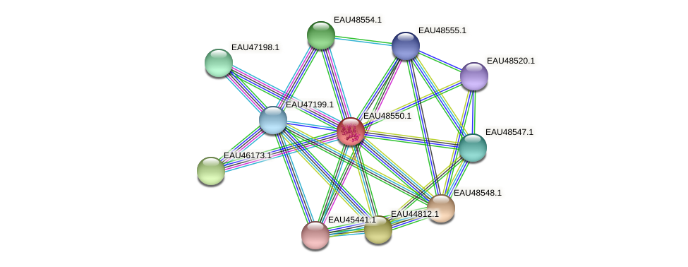 R2601_03218 protein (Pelagibaca bermudensis) - STRING interaction network
