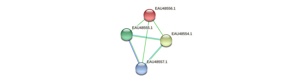 R2601_03248 protein (Pelagibaca bermudensis) - STRING interaction network