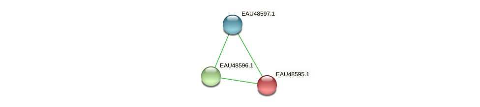 R2601_03443 protein (Pelagibaca bermudensis) - STRING interaction network
