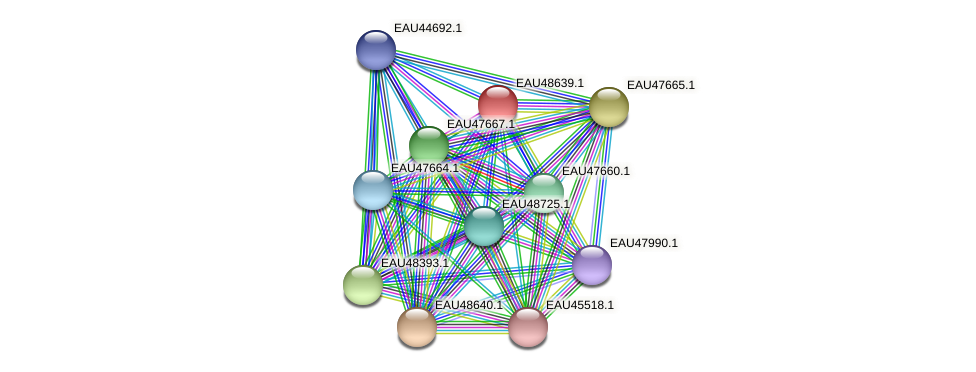 R2601_03663 protein (Pelagibaca bermudensis) - STRING interaction network