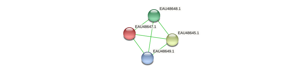 R2601_03703 protein (Pelagibaca bermudensis) - STRING interaction network