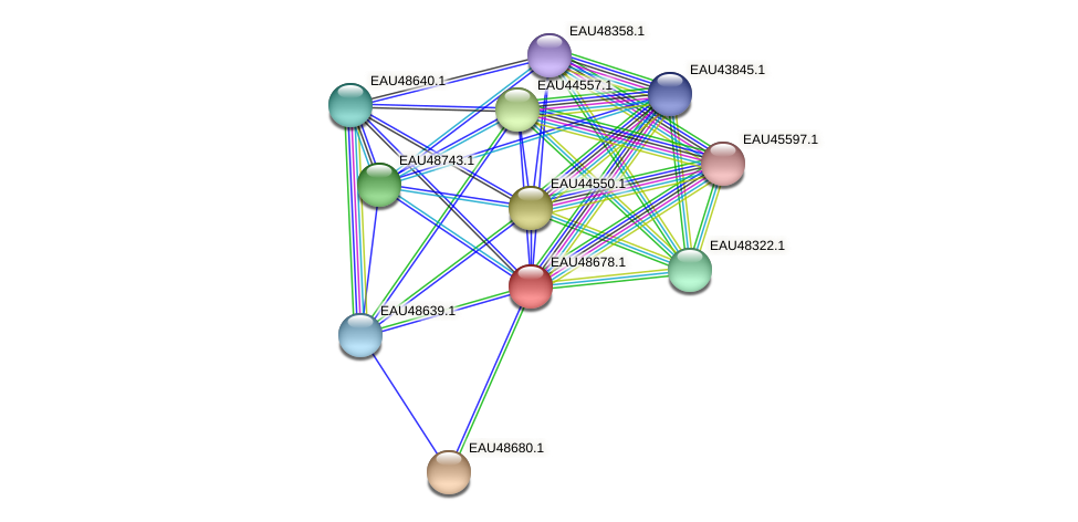 R2601_03858 protein (Pelagibaca bermudensis) - STRING interaction network