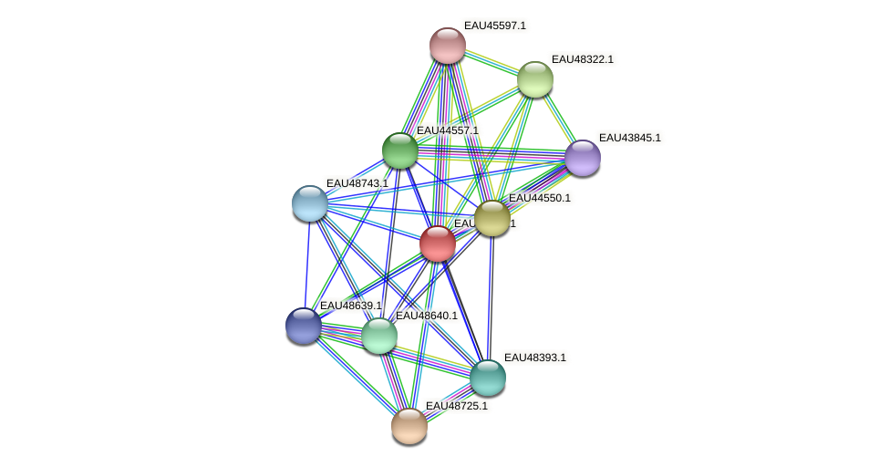R2601_04098 protein (Pelagibaca bermudensis) - STRING interaction network